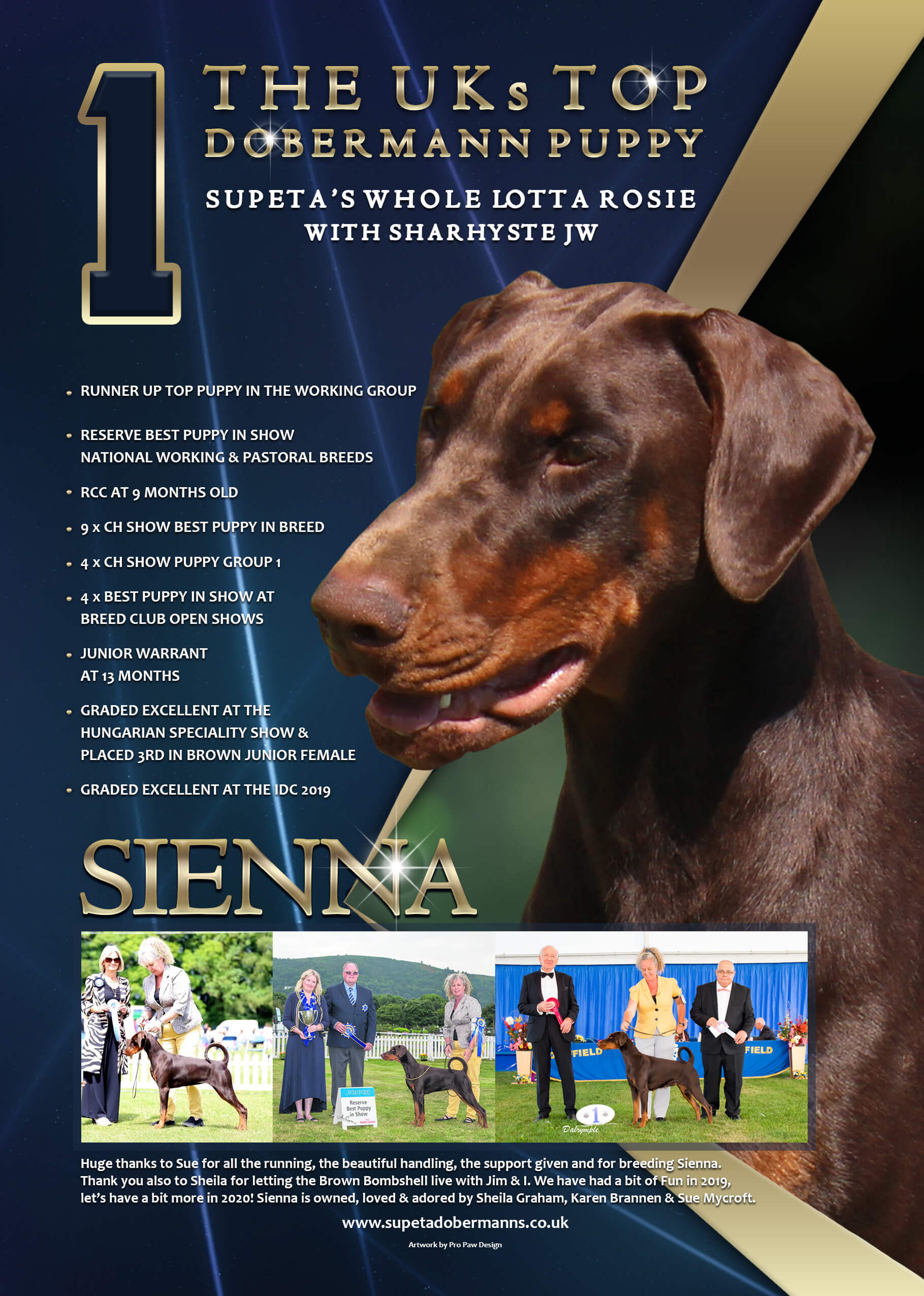 Supeta's Dobermanns