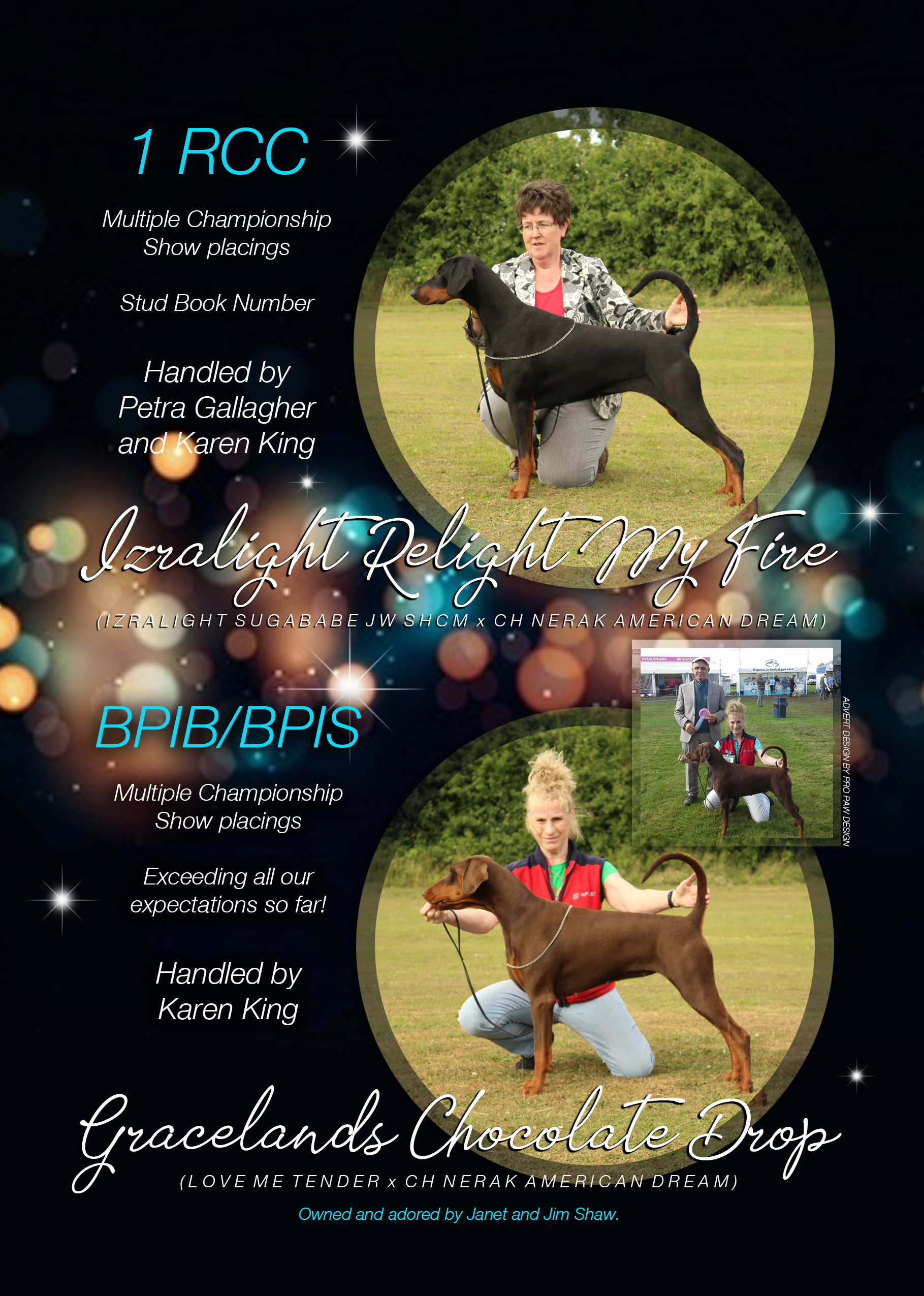 2018 Yearbook Dobermann Izralight